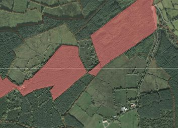 Thumbnail Property for sale in Largan, Drumshanbo, Leitrim
