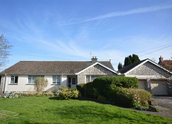 Thumbnail 3 bed detached bungalow for sale in Compton Martin, Bristol