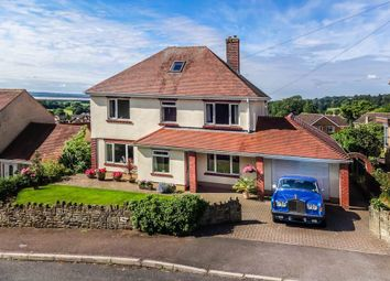Thumbnail 4 bed detached house for sale in Grove Road, Lydney