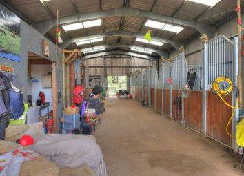 Thumbnail 3 bed equestrian property for sale in Thurning Road, Briston, Melton Constable