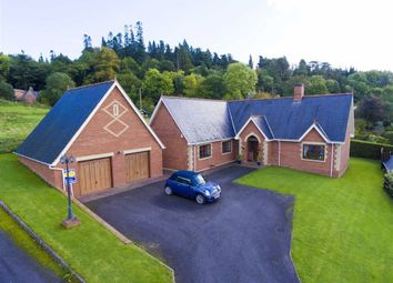 Thumbnail 4 bed detached bungalow for sale in Poplar Drive, Welshpool, Welshpool