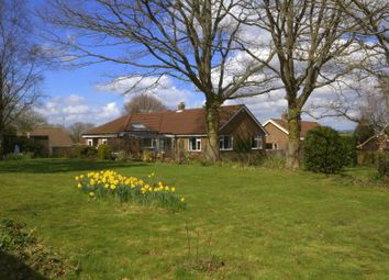 Thumbnail 4 bed detached bungalow for sale in Whitelocks Close, Kingston, Canterbury