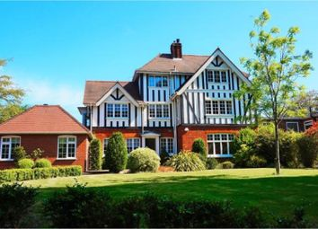Thumbnail 4 bed detached house to rent in Lexden Road, Colchester