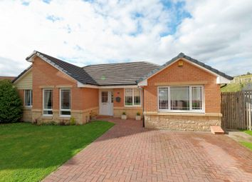 Thumbnail 4 bedroom bungalow for sale in Furrow Crescent, Newtonfarm Cambuslang, Glasgow