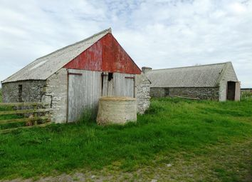 Thumbnail Land for sale in Rattar Farm, Dunnet