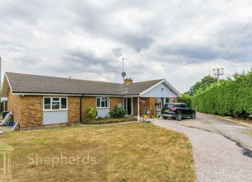 Thumbnail 3 bed detached bungalow for sale in Hoe Lane, Nazeing, Essex