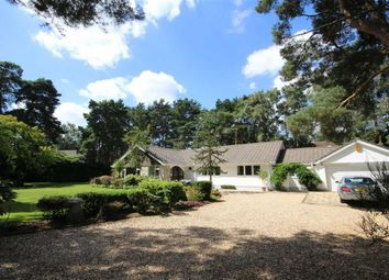 4 bed detached bungalow for sale in Hurn Road, Ringwood BH24