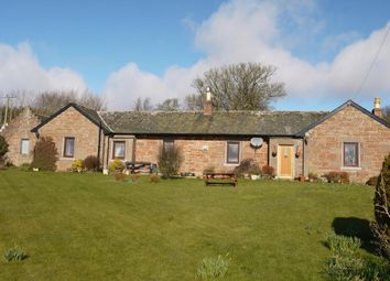 Thumbnail 4 bed cottage for sale in Balhall Cottage & Development Site, (Registered Smallholding), Menmuir