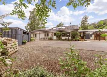 Thumbnail 4 bed bungalow for sale in Camserney, Aberfeldy