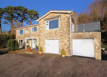 Thumbnail 4 bedroom property for sale in Timber Hill, Lyme Regis