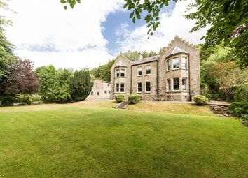 Thumbnail 10 bed country house for sale in Lifestyle & Business Opportunity, High Street, Stanhope, County Durham
