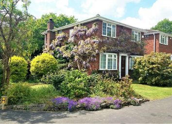 4 bed detached house for sale in Finney Drive, Windlesham, Surrey GU20