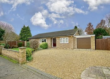 Thumbnail 3 bed detached bungalow for sale in Little Paxton, St Neots, Cambridgeshire