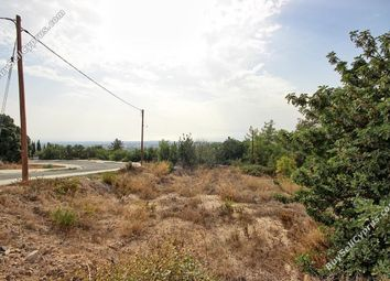 Thumbnail Land for sale in Mesa Chorio, Paphos, Cyprus