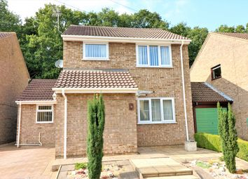 Thumbnail 3 bed detached house for sale in Wood Drive, Beetley