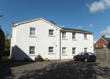 Thumbnail 2 bed flat to rent in Godwin Way, Horsham