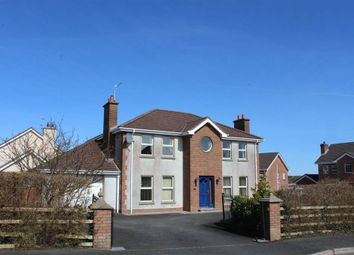 Thumbnail 4 bed detached house for sale in Highfields Avenue, Newry