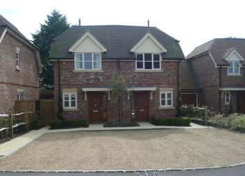 Thumbnail 2 bed semi-detached house to rent in Shepherds Walk, Basingstoke