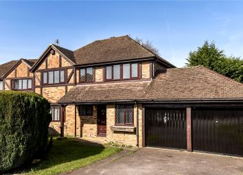 Thumbnail 4 bed detached house to rent in Fakenham Way, Owlsmoor, Sandhurst, Berkshire