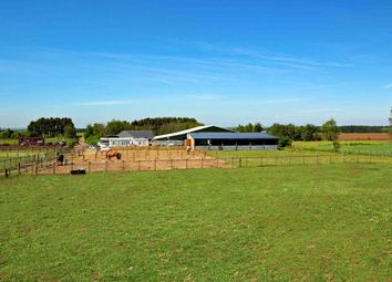 Thumbnail 3 bedroom equestrian property for sale in Biggar Road, Carnwath