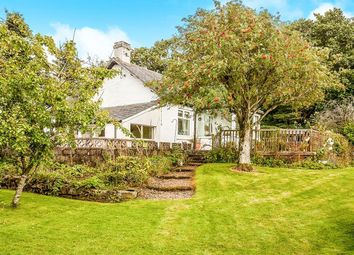 Thumbnail 2 bed bungalow for sale in Tealing, Dundee