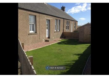 Thumbnail 2 bed semi-detached house to rent in Balkaithly Cottages, St Andrews