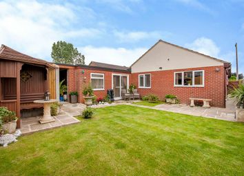 Thumbnail 4 bed detached bungalow for sale in Holm Road, Westwoodside, Doncaster