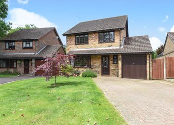 Thumbnail 4 bed detached house to rent in Belloc Court, Manor Fields, Horsham