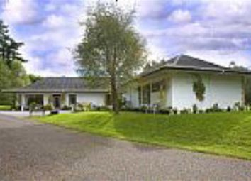 Thumbnail 5 bed detached bungalow for sale in Drumnadrochit, Inverness