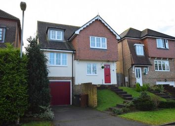 Thumbnail 4 bed detached house for sale in Meadow Rise, Horam, Heathfield, East Sussex