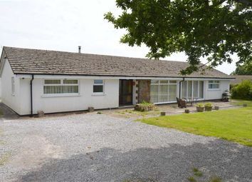 Thumbnail 4 bed detached bungalow for sale in Reynoldston, Swansea