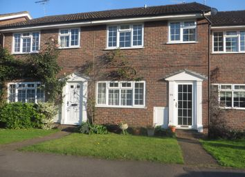 Thumbnail 3 bed terraced house to rent in Church Road, Milford, Godalming