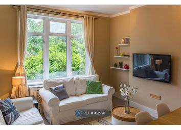 Thumbnail 4 bed flat to rent in George Lane, London