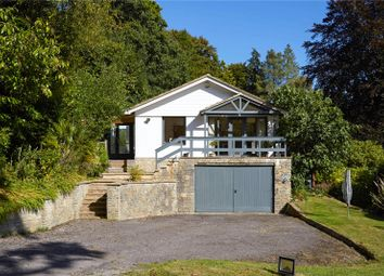 Thumbnail 4 bed detached house for sale in Midhurst Road, Haslemere, Surrey