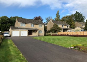 Thumbnail 4 bed detached house for sale in Holcombe Hill, Holcombe, Radstock