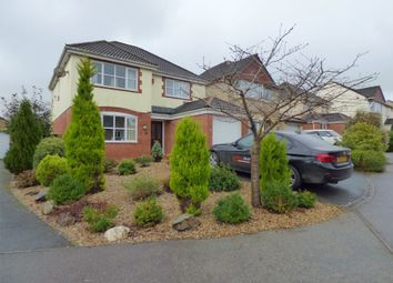 Thumbnail 4 bed detached house for sale in Curlew Close, Okehampton