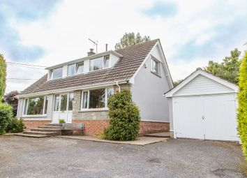 Thumbnail 2 bed detached bungalow for sale in Zeal Monachorum, Crediton
