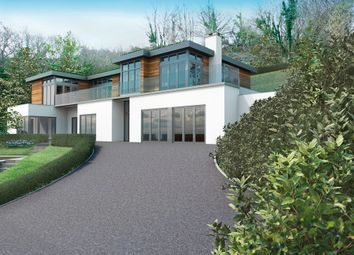 Thumbnail 5 bedroom detached house for sale in Lower Street, Dittisham, Dartmouth, Devon