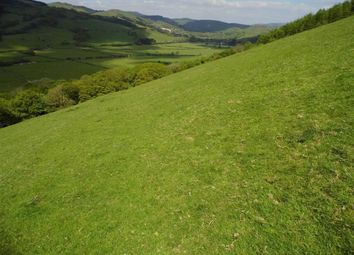 Thumbnail Farm for sale in Land At The Ffridd, Llanwrin, Machynlleth, Powys
