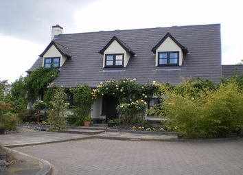 Thumbnail 4 bed detached house to rent in Saddlers Close, Crockernwell, Exeter