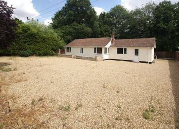 Thumbnail 2 bed detached bungalow to rent in Mendlesham Road, Brockford, Stowmarket