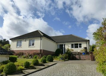4 bed detached bungalow for sale in Sandy Lane, Taverham, Norwich, Norfolk NR8