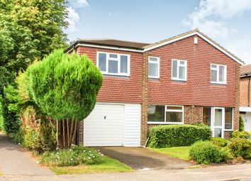 Thumbnail 5 bed detached house to rent in Waterfield Close, Horsham
