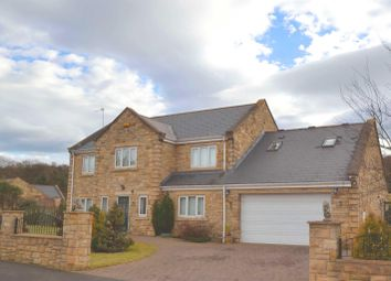 Thumbnail 5 bedroom detached house for sale in Parkside, Blackhill, Consett