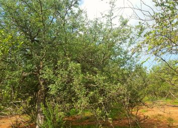 Thumbnail Land for sale in 172 Snake Eagle, Raptors View Wildlife Estate, Hoedspruit, Limpopo Province, South Africa