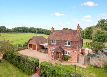 Thumbnail 4 bed detached house to rent in Ditches Green, Trap Lane, Ockley, Dorking