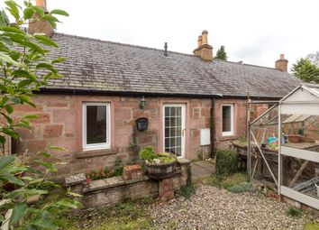 Thumbnail 3 bed terraced bungalow to rent in Poplar Row, Northmuir, Kirriemuir