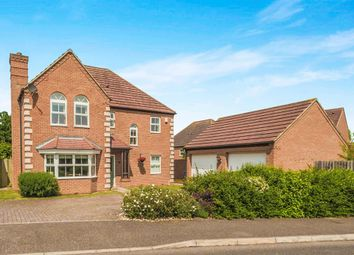 Thumbnail 4 bedroom detached house for sale in Heron Way, Royston