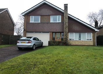 Thumbnail 4 bed detached house to rent in Chanctonbury Way, Crawley