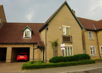 Thumbnail 4 bedroom link-detached house for sale in Havergate Road, Ipswich